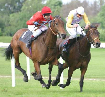 horse_racing_under_saddle_jockey